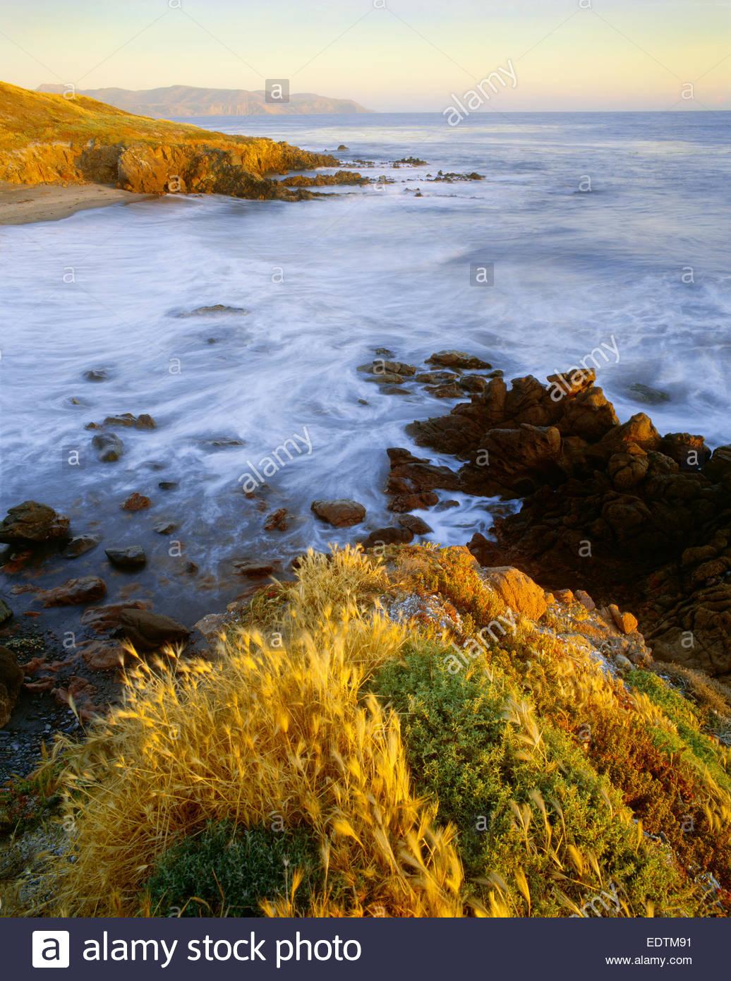 El extremo oeste de la isla de Santa Cruz, preservar la conservación de la Naturaleza. La Isla Santa Cruz, California. Foto de stock