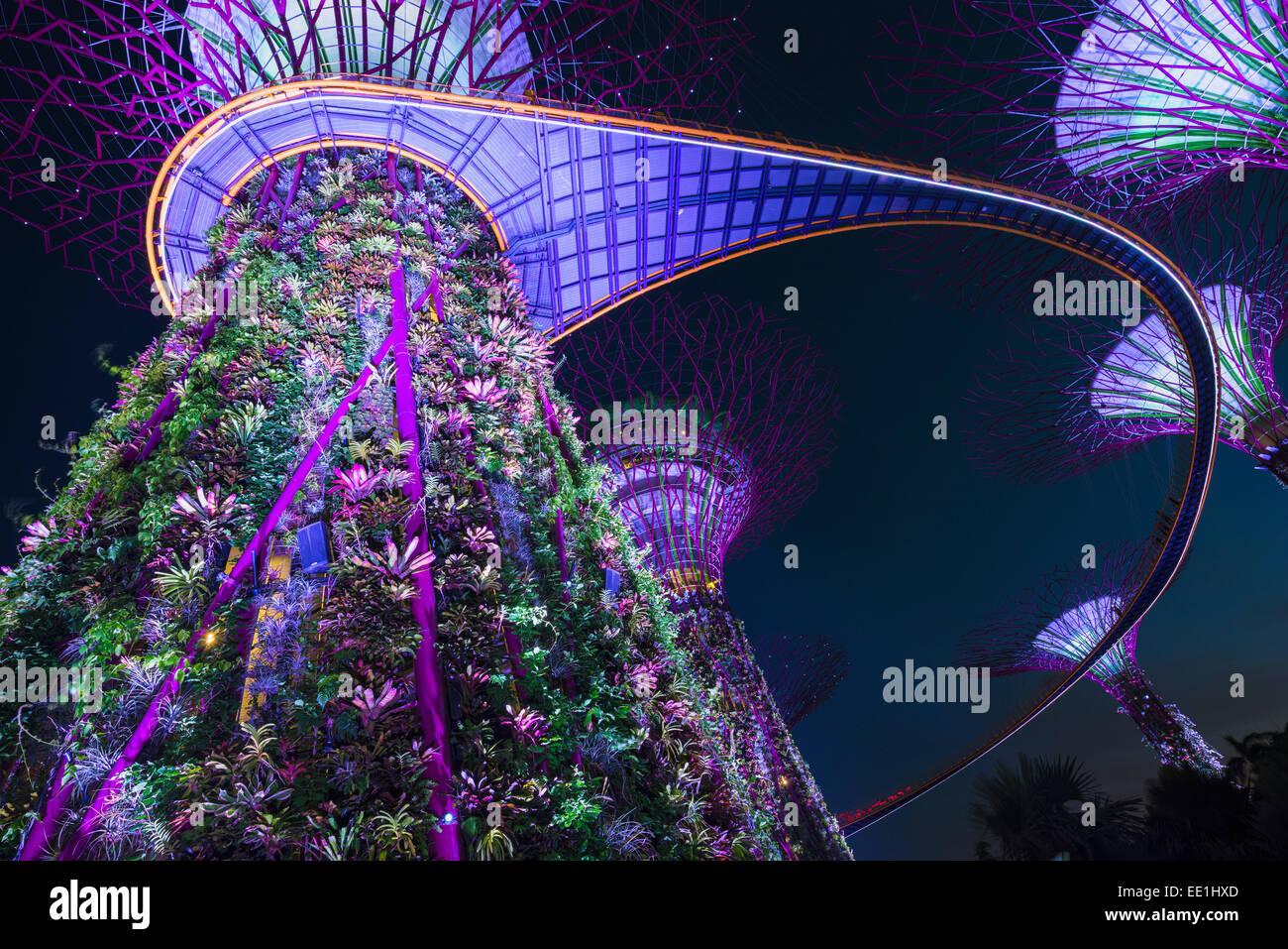 Jardines junto a la bahía de noche, Singapur, Sudeste de Asia, Asia Imagen De Stock