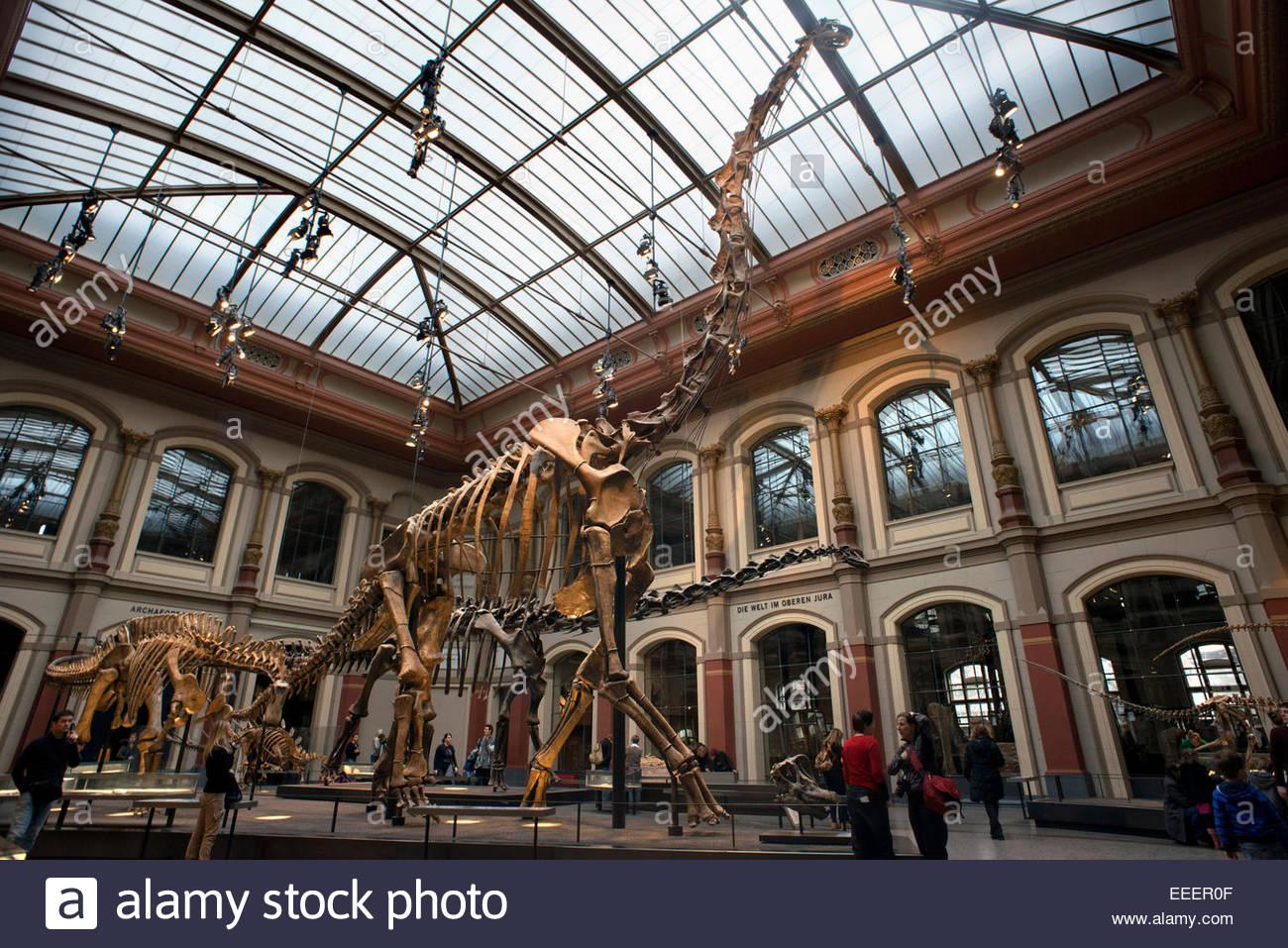 Fuer Naturkunde Museum, Museo de Historia Natural de Berlín. Museo Paleontológico en Berlín antiguos Imagen De Stock