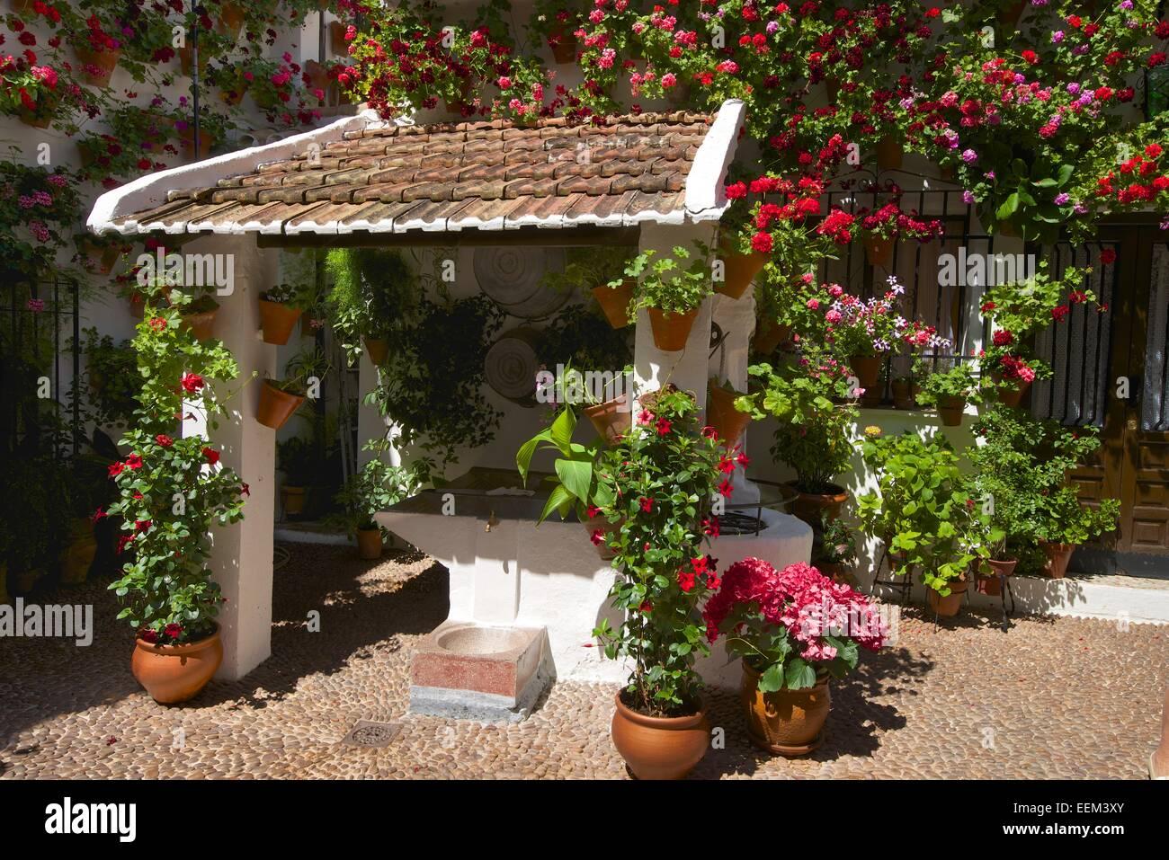 patio interior adornados de flores durante la fiesta de