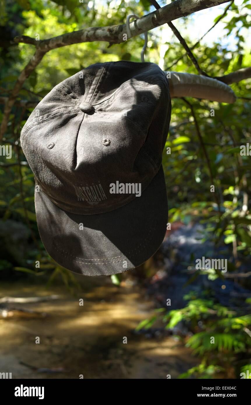 Una tapa de Australia colgando de una rama de árbol en una percha acolchada cerca de una cascada. Foto de stock