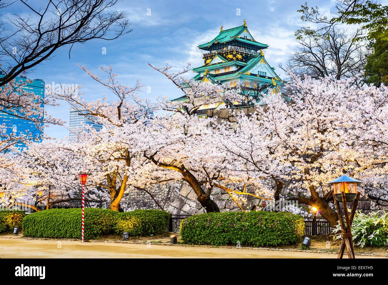 Osaka, Japón, en el Castillo de Osaka durante la temporada de primavera. Imagen De Stock