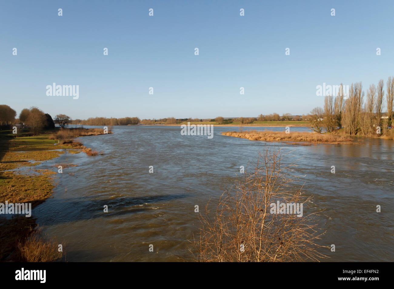Campo con agua, río Loira, cerca de Amboise, Indre et Loire, Francia. Imagen De Stock