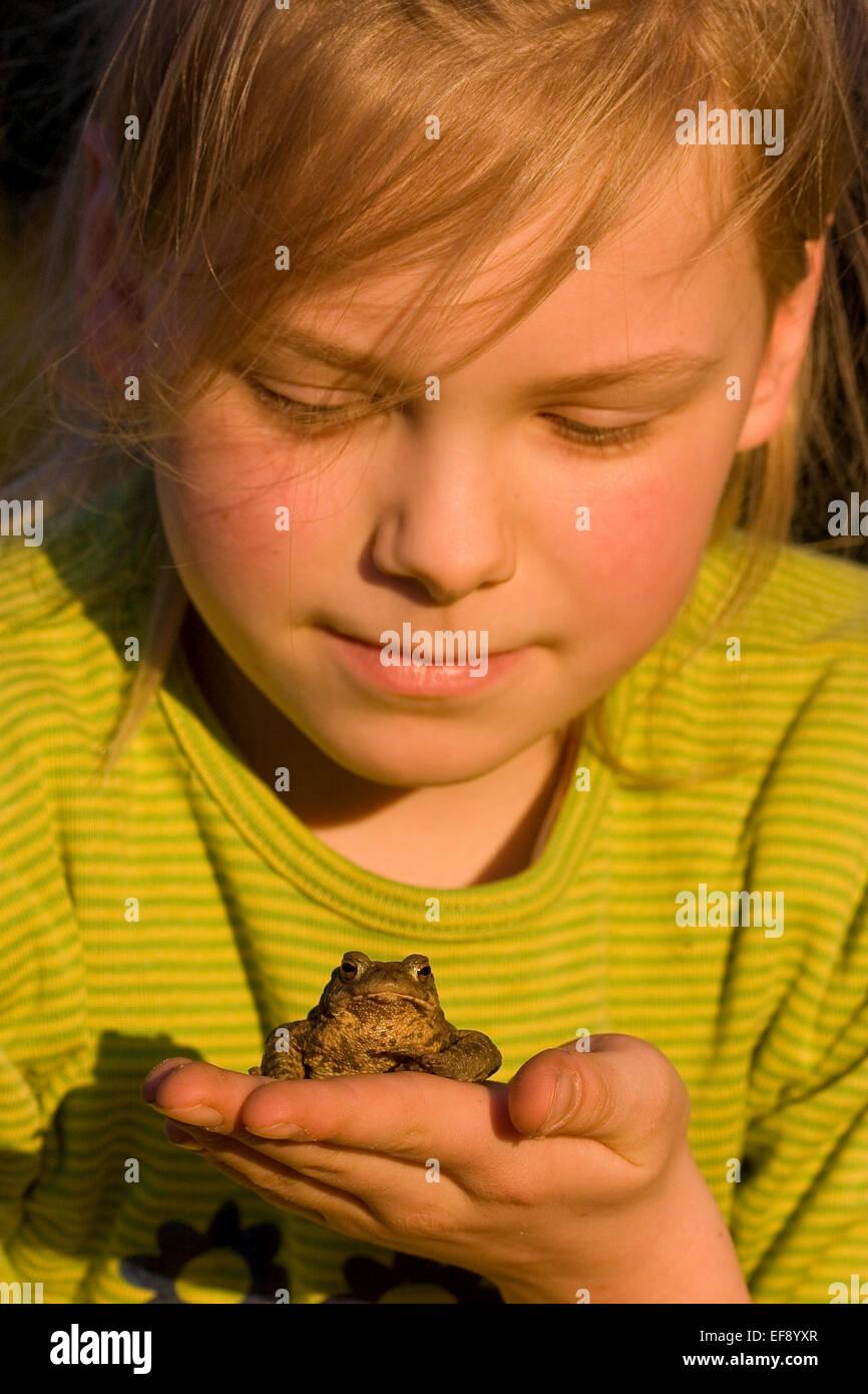 El sapo común europeo, sapos, niña, niño, niños, Mädchen, amables, Kröte Erdkröte, Kröten, mano Bufo bufo Foto de stock