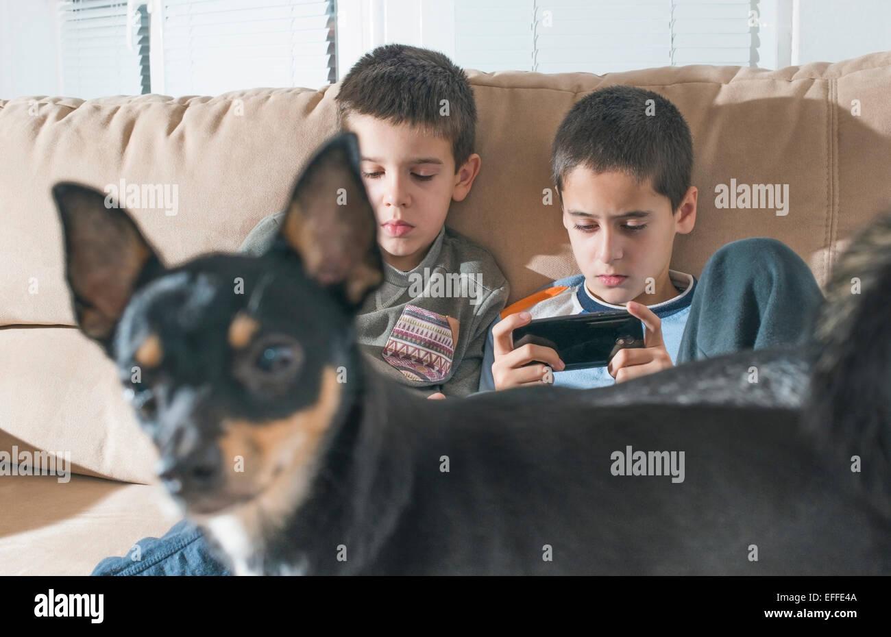 Dos muchachos jugando con sus smartphones mientras perro de pie en primer plano Imagen De Stock