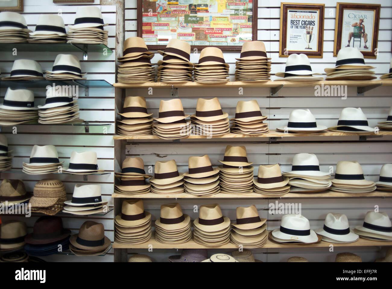 34c5e90287354 Victor s Panamá Shop. Hut shop. Un sombrero de Panamá es un tradicional  rebosaban sombrero de paja que es efectivamente realizados en el Ecuador
