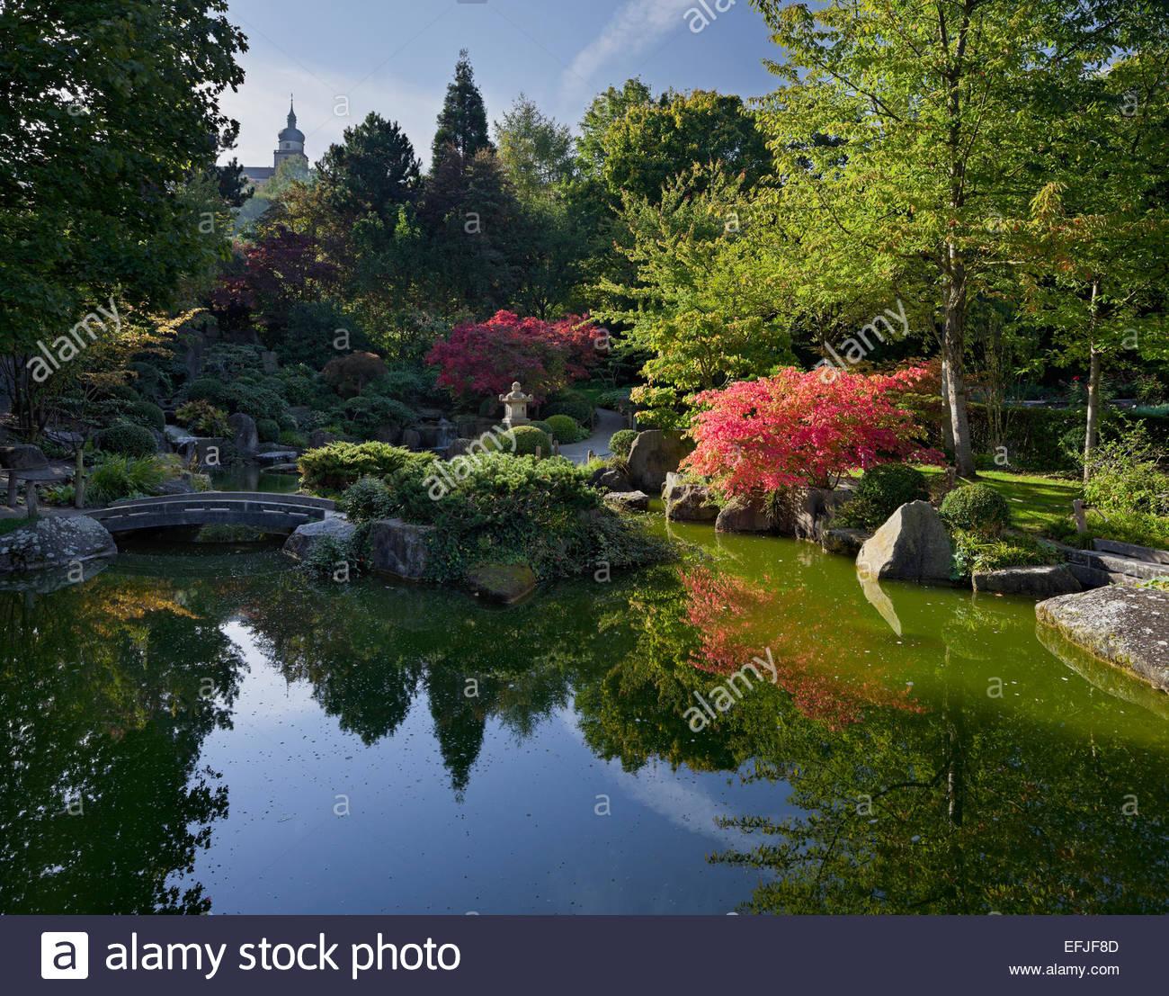 Jardín japonés con un estanque, Marienberg Fortress, Würzburg, Baviera, Alemania Foto de stock