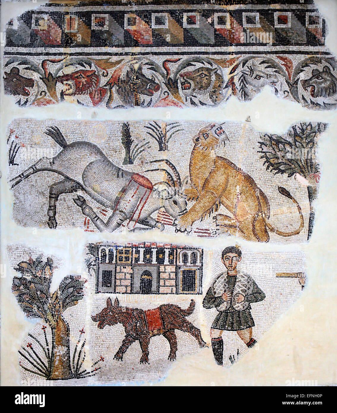 Mosaico romano, Constantine, Argelia Imagen De Stock
