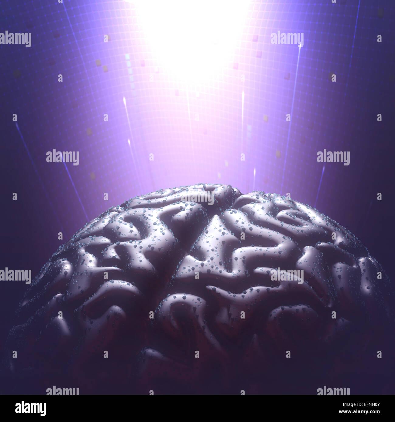 Cerebro de metal con las gotas de lluvia en un entorno oscuro. Copie el espacio y trazado de recorte incluido. Imagen De Stock
