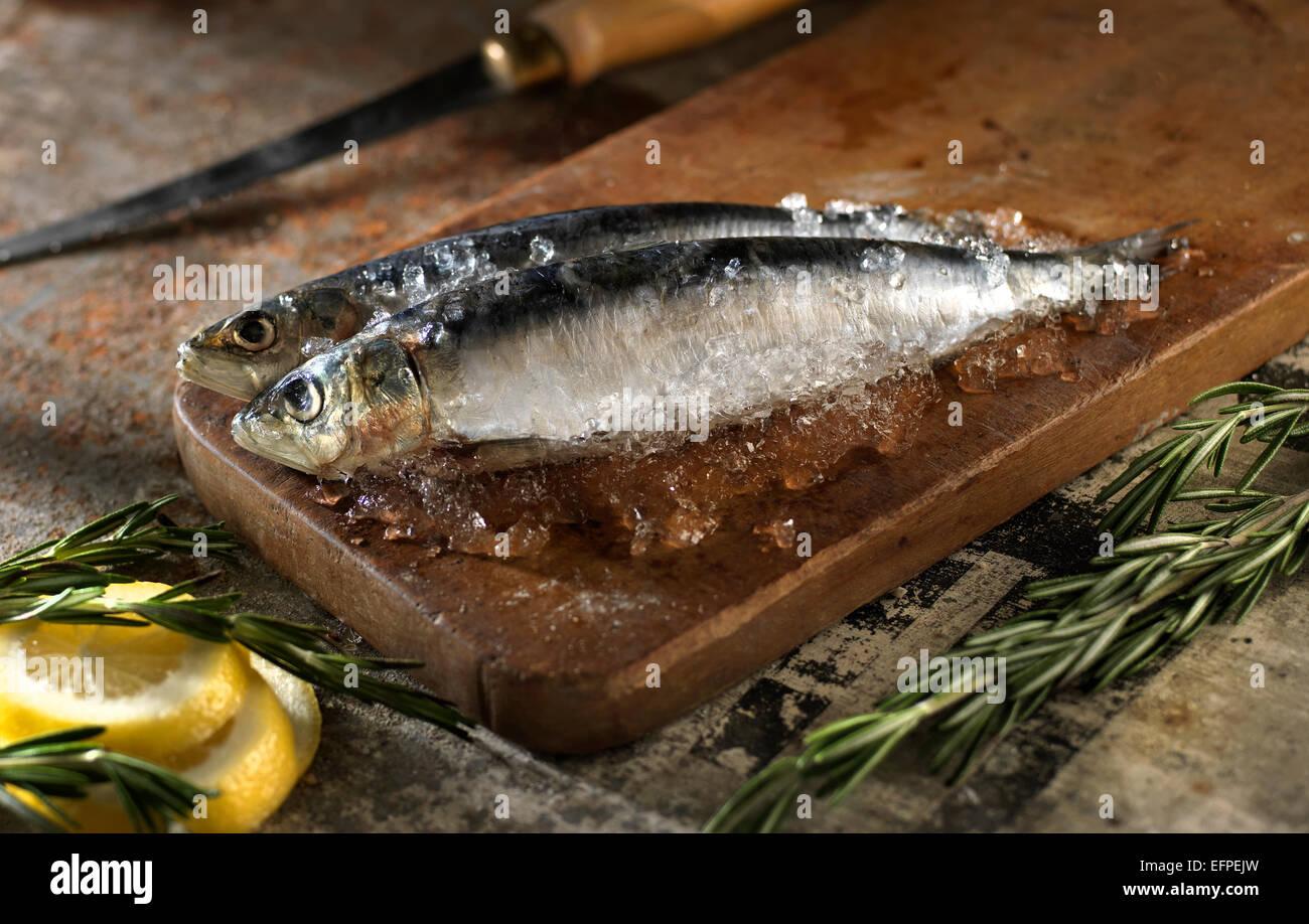 Todavía la vida de los peces en una tabla de cortar con la rodaja de limón y Romero Foto de stock
