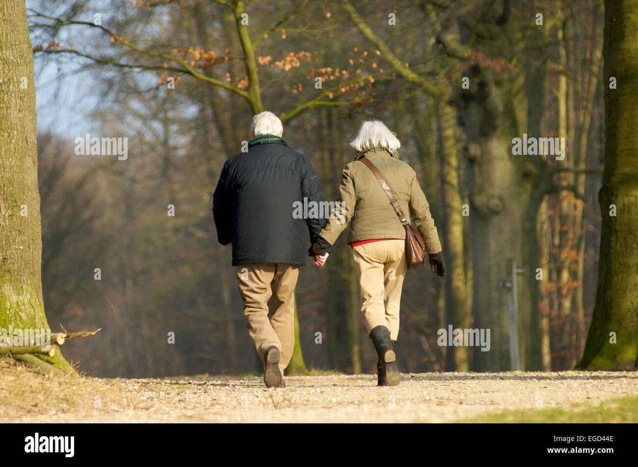 Pareja De Ancianos Caminando En Un Bosque Juntos Y Tomados De La