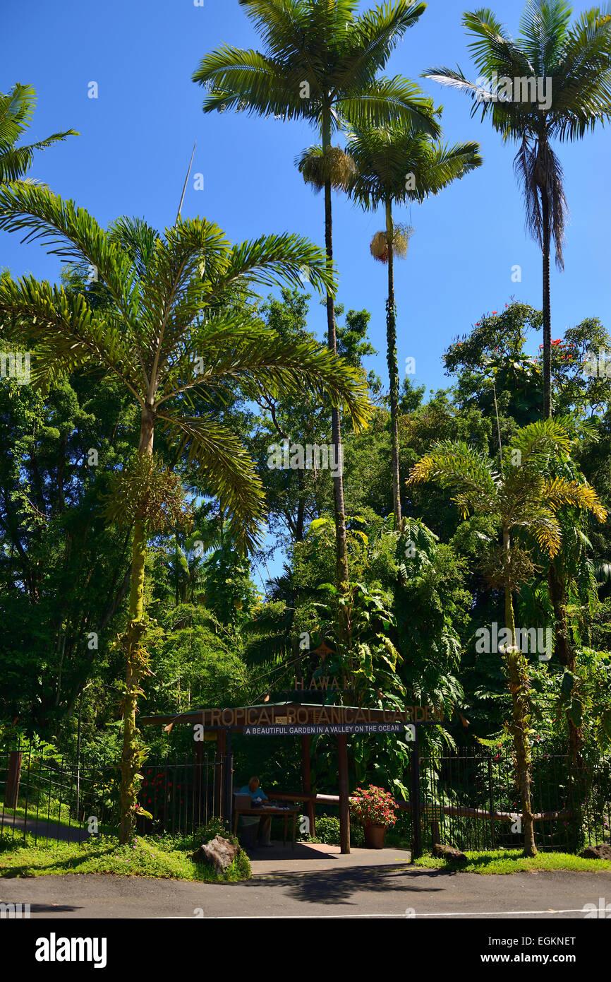 Entrada al jardín botánico tropical de Hawaii en Bahía Onomea, Big Island, Hawaii, EE.UU. Foto de stock