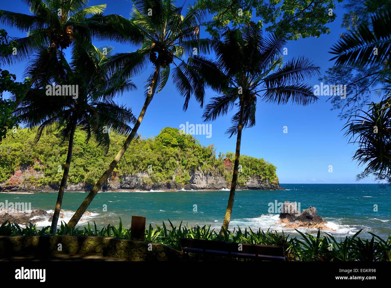 Vistas a la bahía Onomea desde el jardín botánico tropical de Hawaii, Big Island, Hawaii, EE.UU. Foto de stock