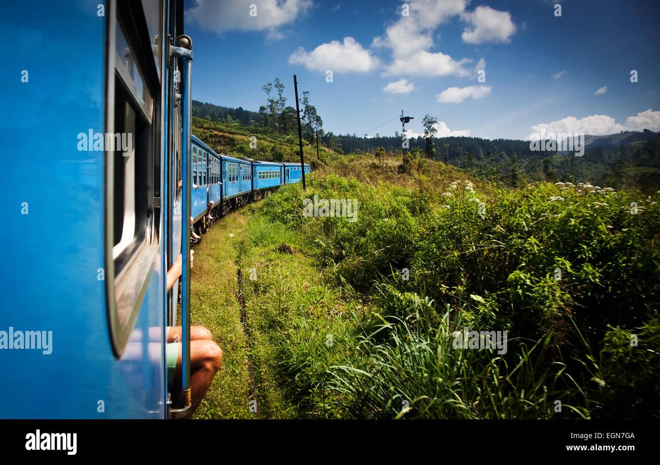 Tren de Nuwara Eliya a Kandy entre las plantaciones de té en las tierras altas de Sri Lanka Imagen De Stock