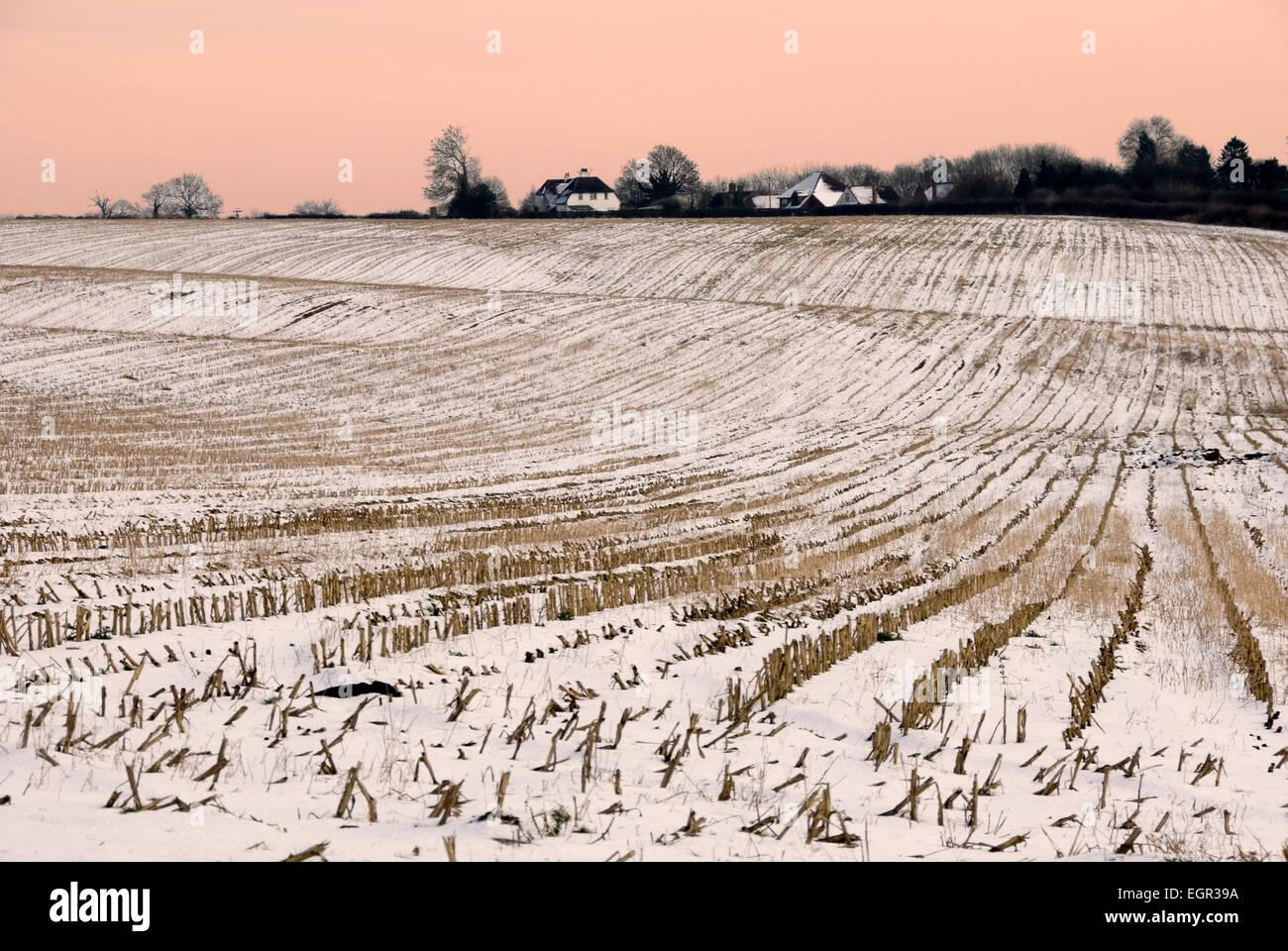 Mediados de invierno -campo cubierto de nieve - líneas de rastrojo que conduce a las cabañas y esbozó Imagen De Stock