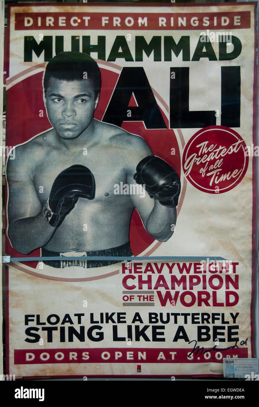 Boxeo, Muhammad Ali, boxeador campeón de peso pesado mundial ( directo desde el ringside ) Imagen De Stock