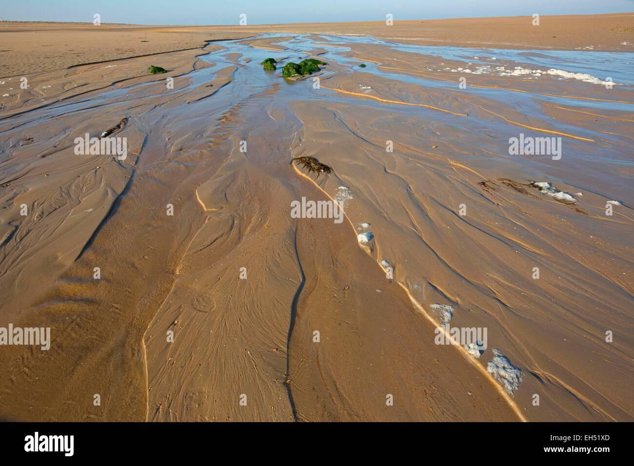 Francia, Vendée, la barre de Monts, playas, foreshore Imagen De Stock