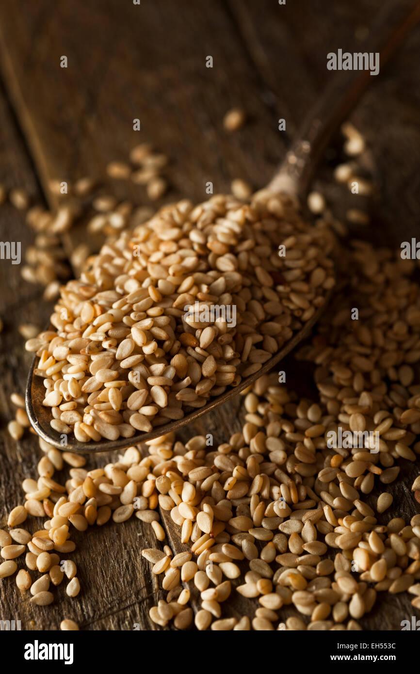 Las materias orgánicas en un tazón de semillas de sésamo Foto de stock