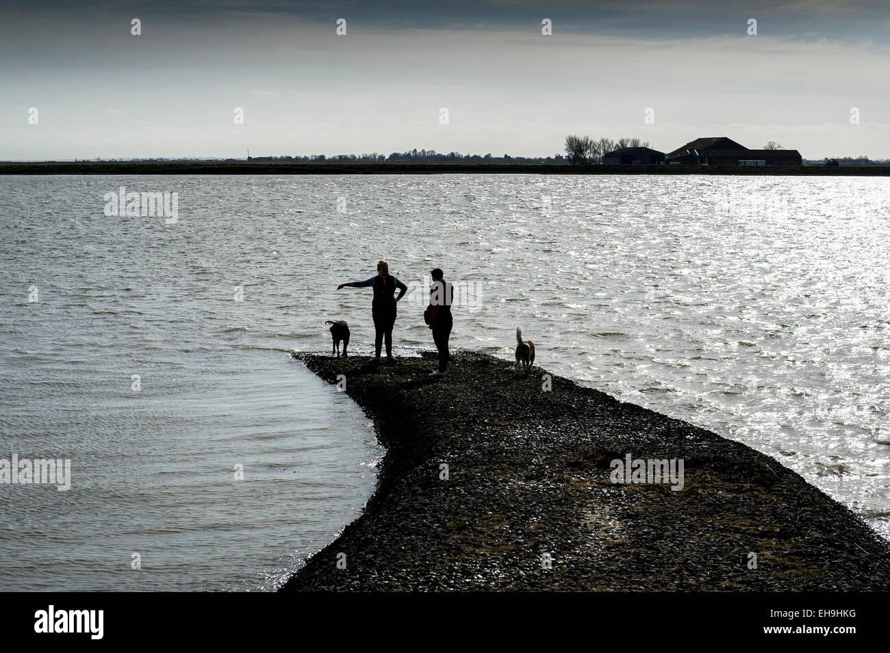 Paseadores de perros parado sobre una pequeña causeway en las orillas del río Crouch en Burnham en Crouch Imagen De Stock