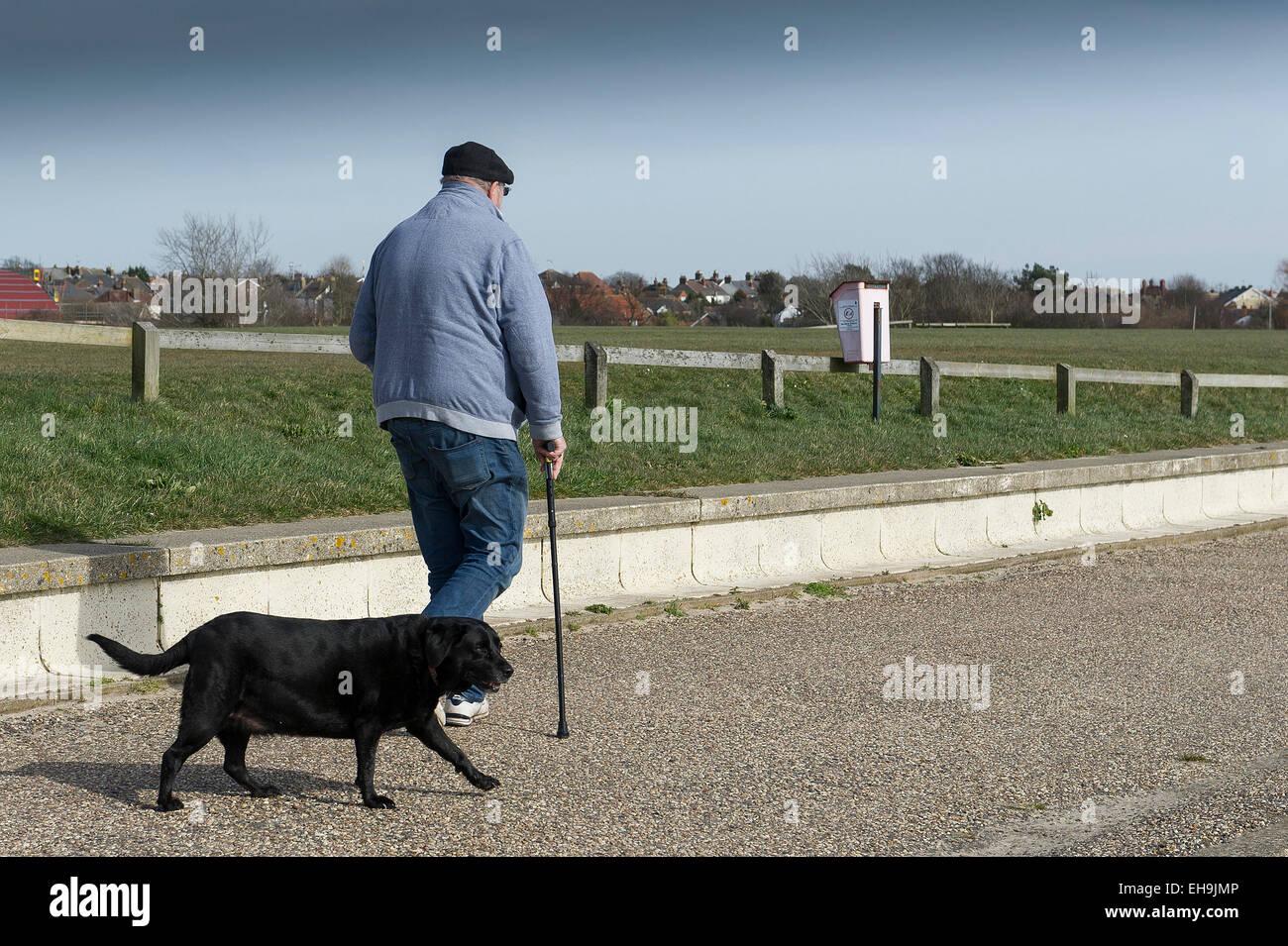 Un hombre que camina su perro a lo largo de las riberas del río Crouch en Burnham en Crouch en Essex. Imagen De Stock