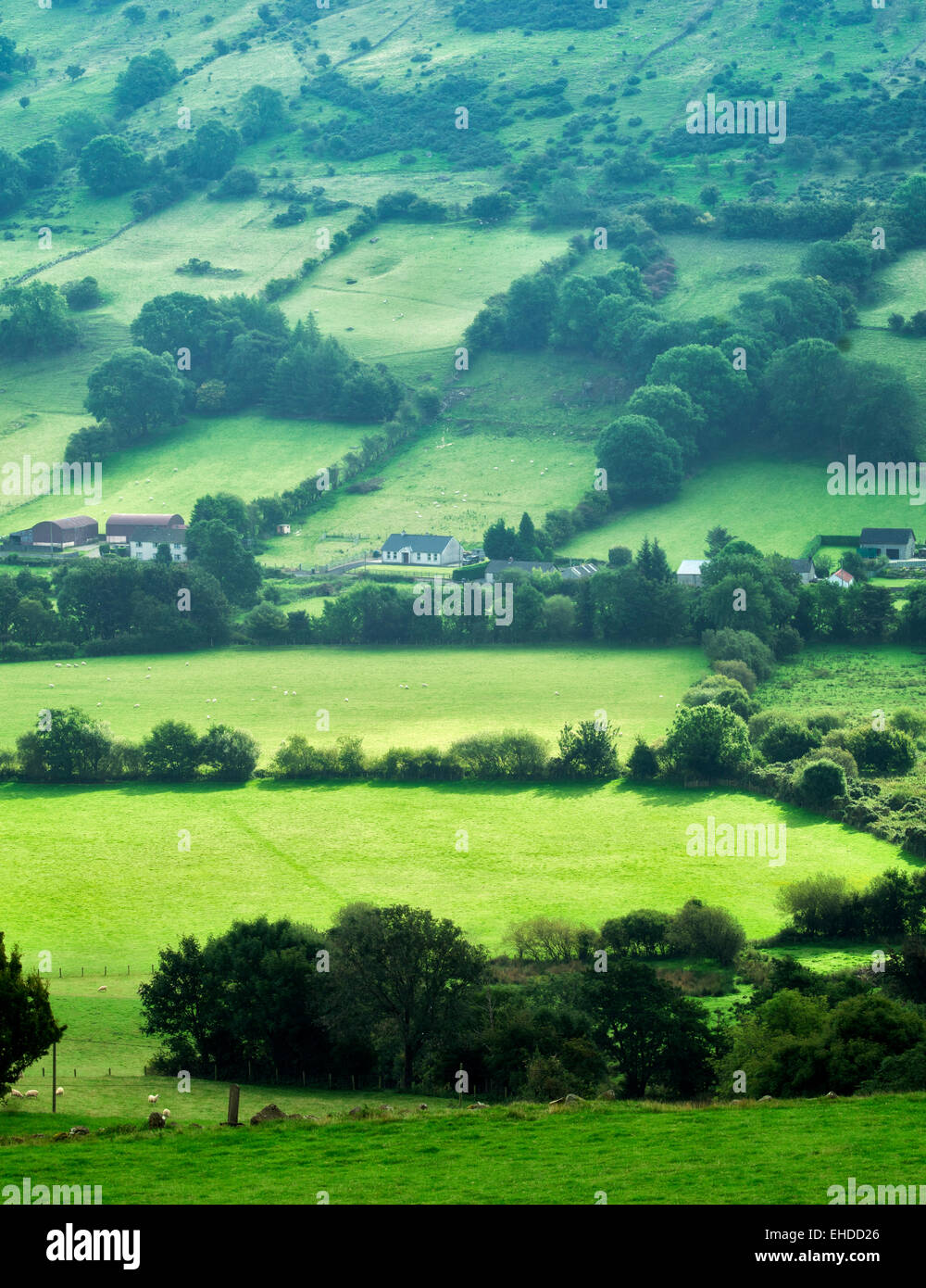 Glenariff valle desde Glenariff Forest Park, Irlanda del Norte Imagen De Stock