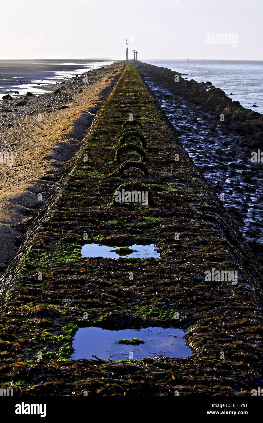 Pier en marea baja, Honfleur, Normandía, Francia Foto de stock