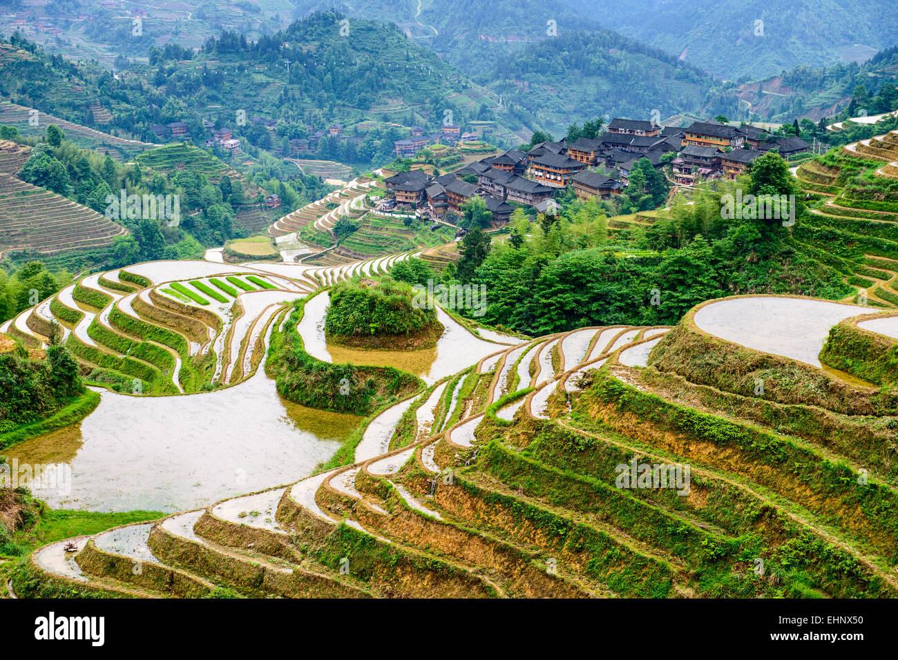 Yaoshan Montaña, Guilin, China terrazas de arroz en la ladera del paisaje. Imagen De Stock