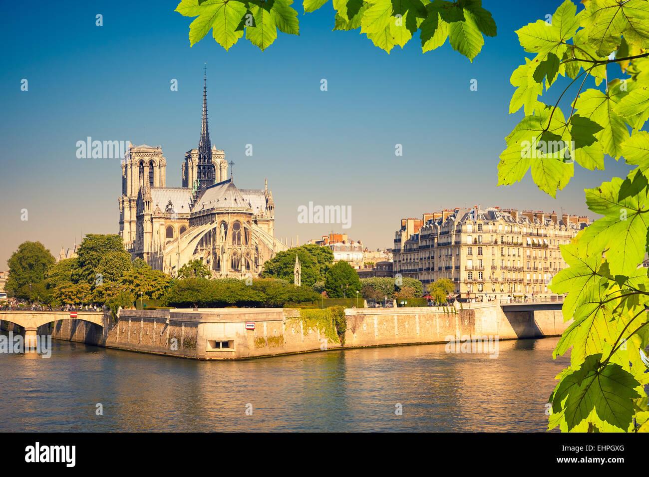 La catedral de Notre Dame de París Imagen De Stock