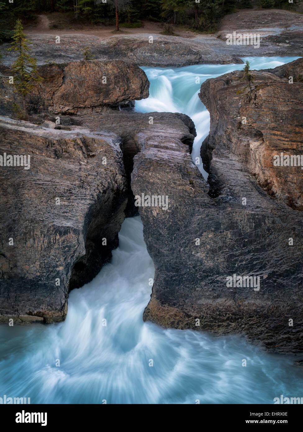 Río Kicking Horse y Puente Natural cae en British Columbia's Canadian Rockies y el Parque Nacional Yoho. Foto de stock