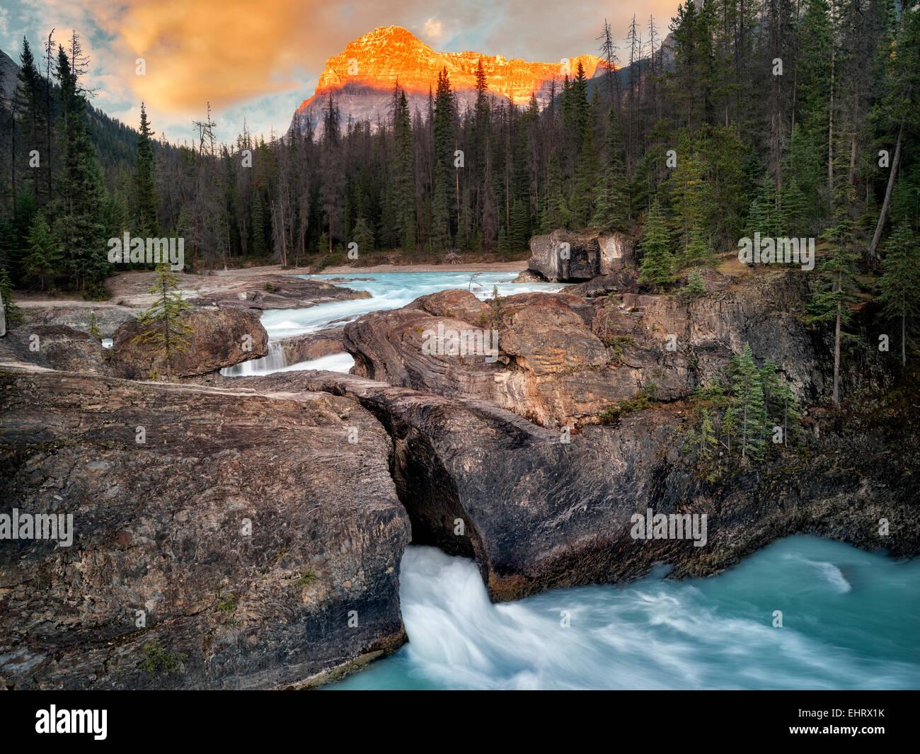 Río Kicking Horse y puente natural disminuye con la puesta de sol en British Columbia's Canadian Rockies y el Parque Nacional Yoho. Foto de stock