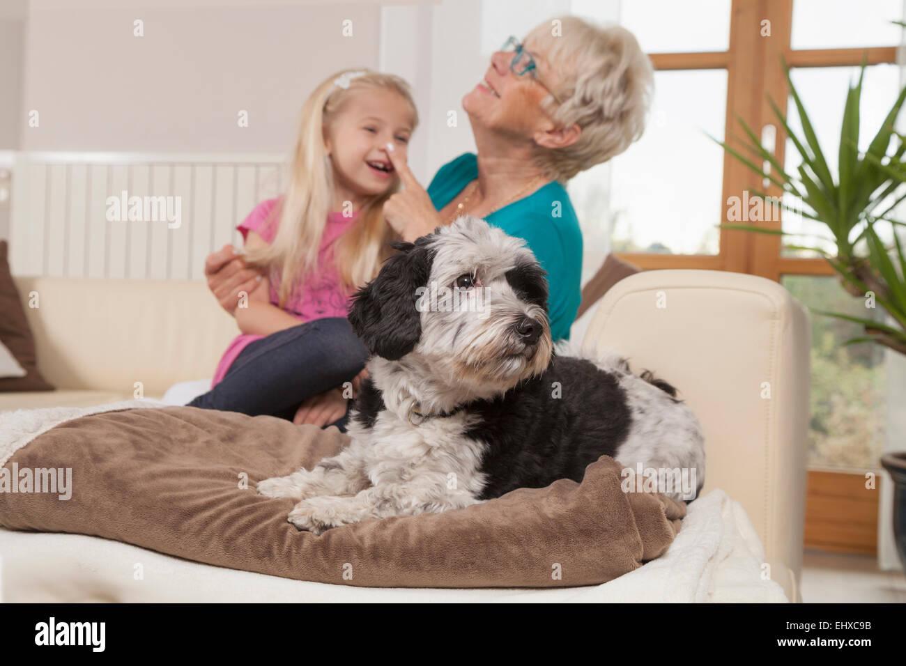 Mujer con perro senior y nieta riendo en un salón, Baviera, Alemania Imagen De Stock
