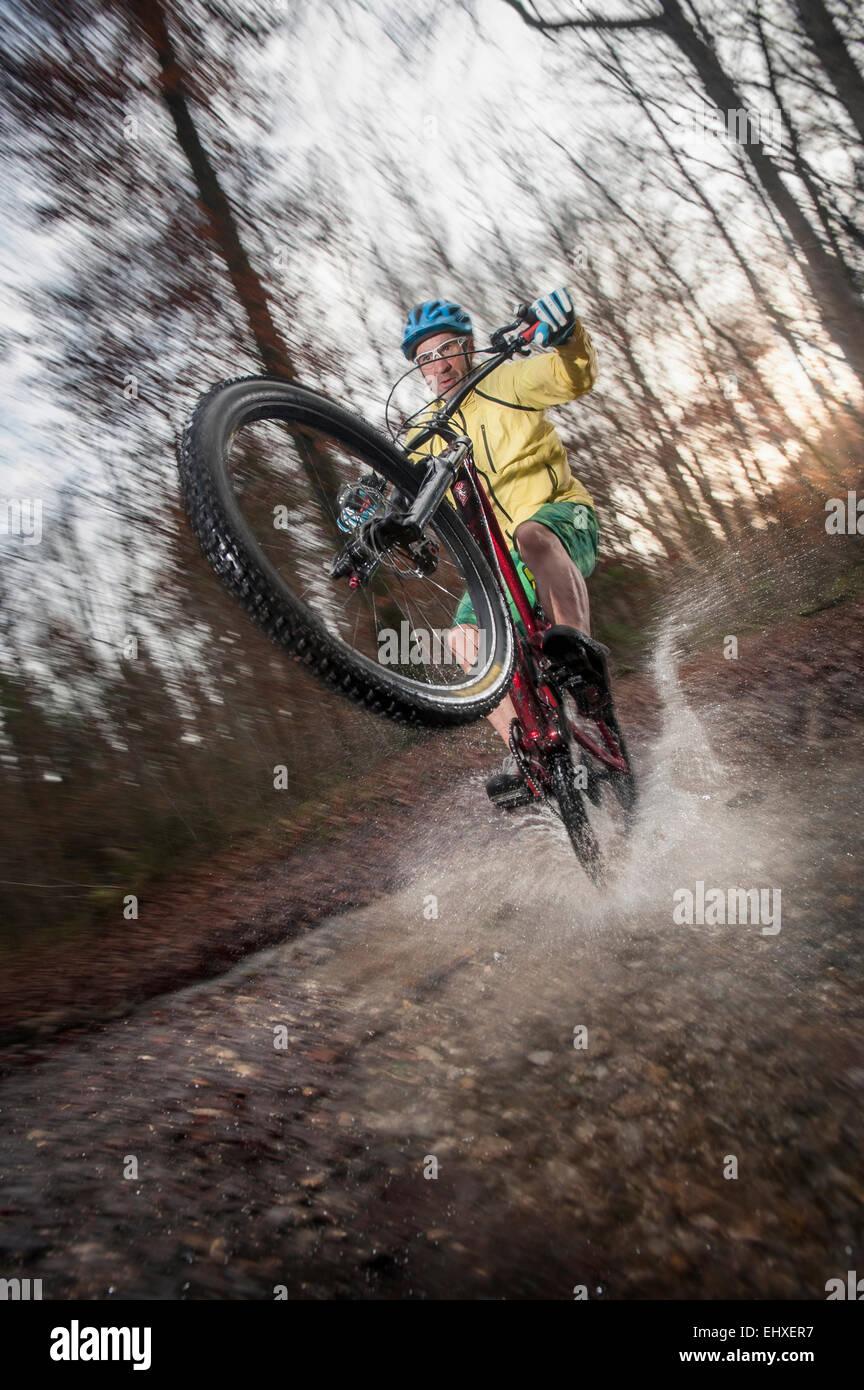 Ciclista de montaña cabalga sobre la rueda trasera a través de un arroyo en el bosque, Baviera, Alemania Imagen De Stock
