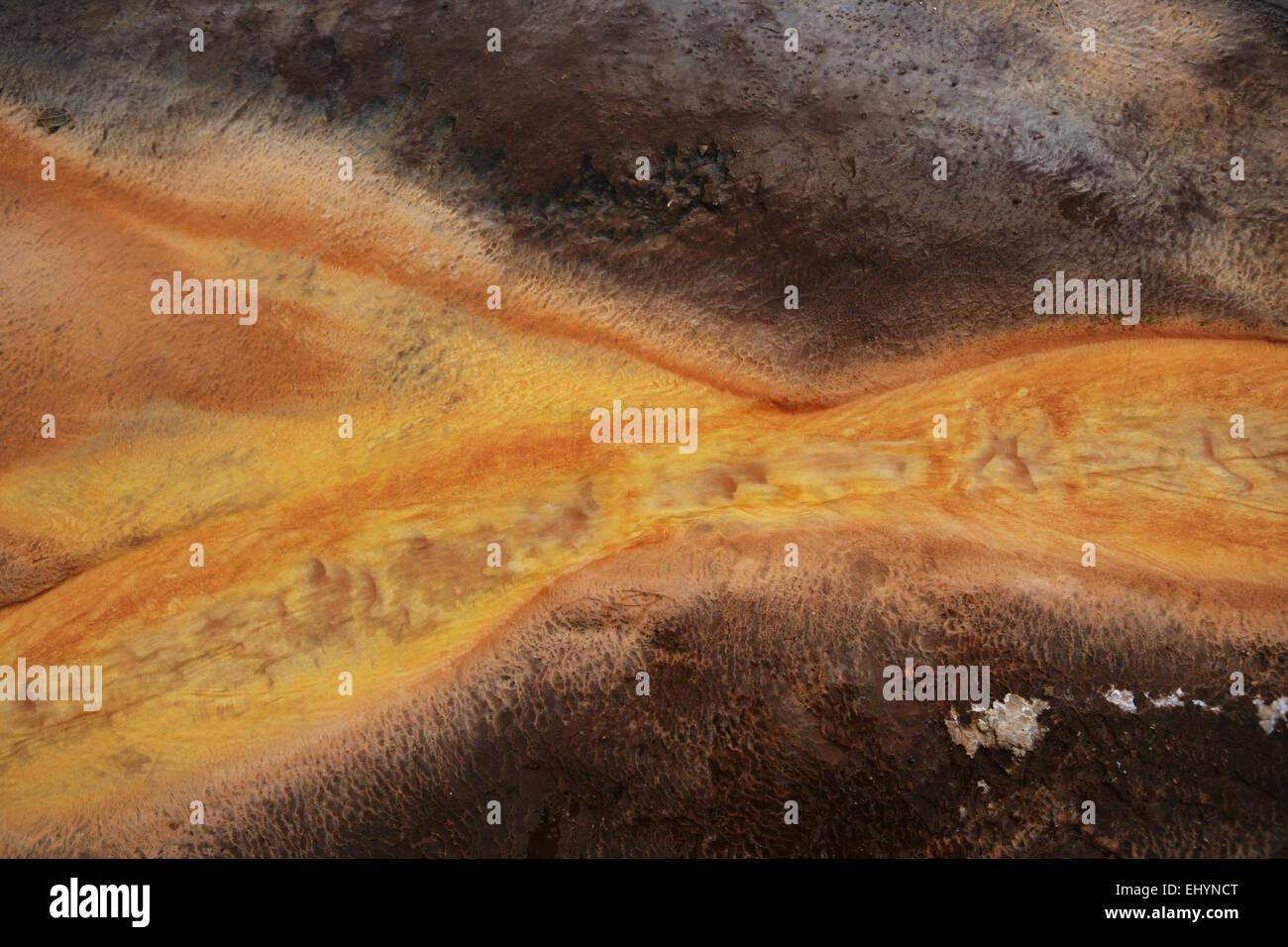 Mat bacteriana, Grand Prismatic Spring, el Parque Nacional Yellowstone, Wyoming, EE.UU. Foto de stock