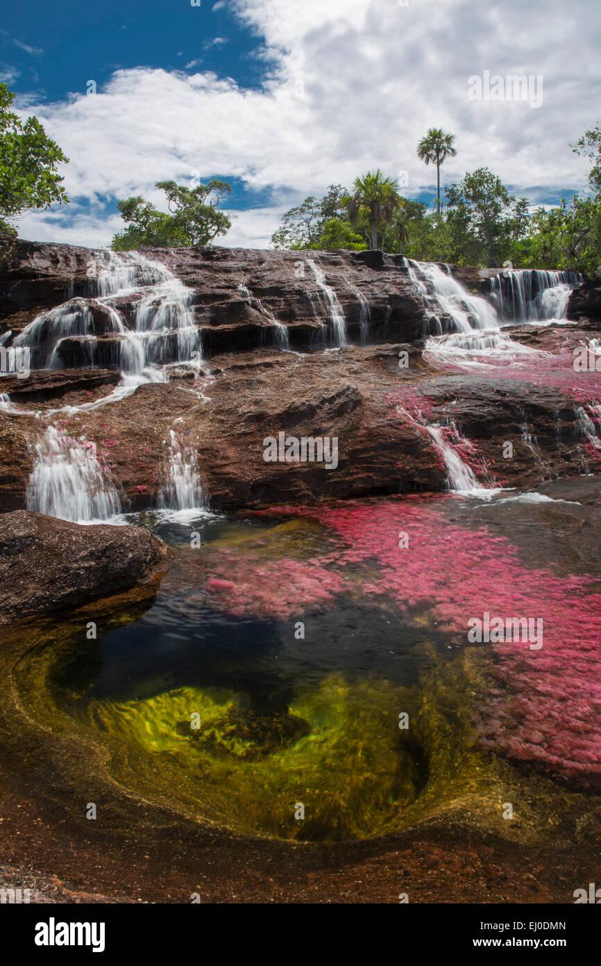 Río, caudal, Brook, cuerpo de agua, la naturaleza, el agua, la América del Sur, América Latina, Colombia, Imagen De Stock