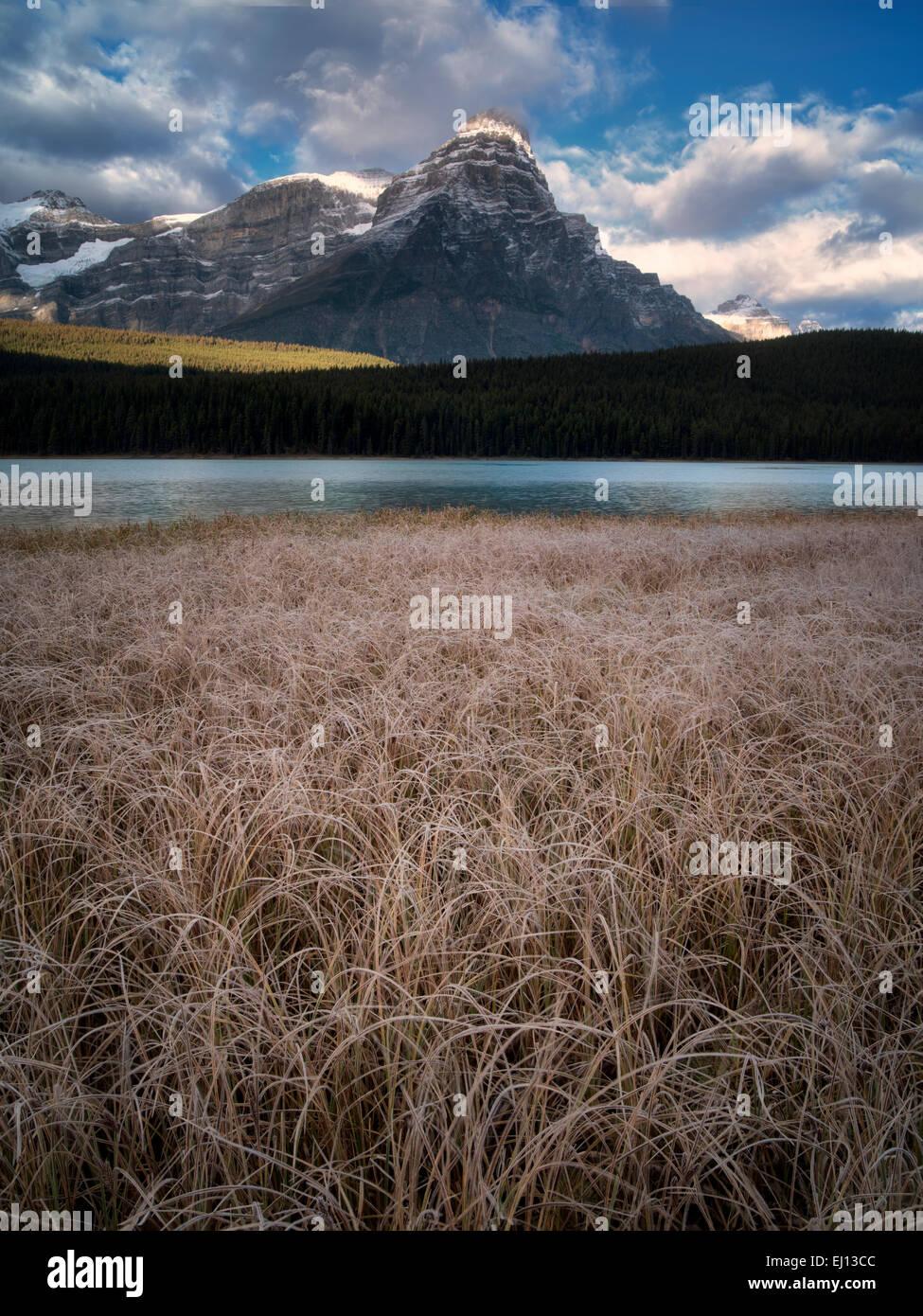 Lagos de aves acuáticas con frosty pastos y montañas. Parque Nacional de Banff, Alberta, Canadá. Foto de stock