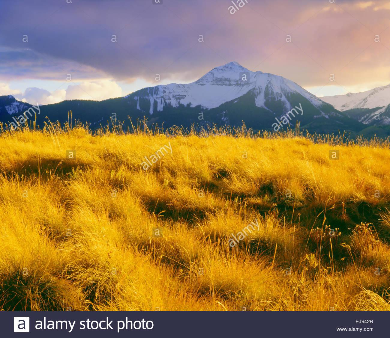 """Sunshine"" Montaña otoño de 'San Juan montañas' 'Uncompahgre National Forest' Imagen De Stock"