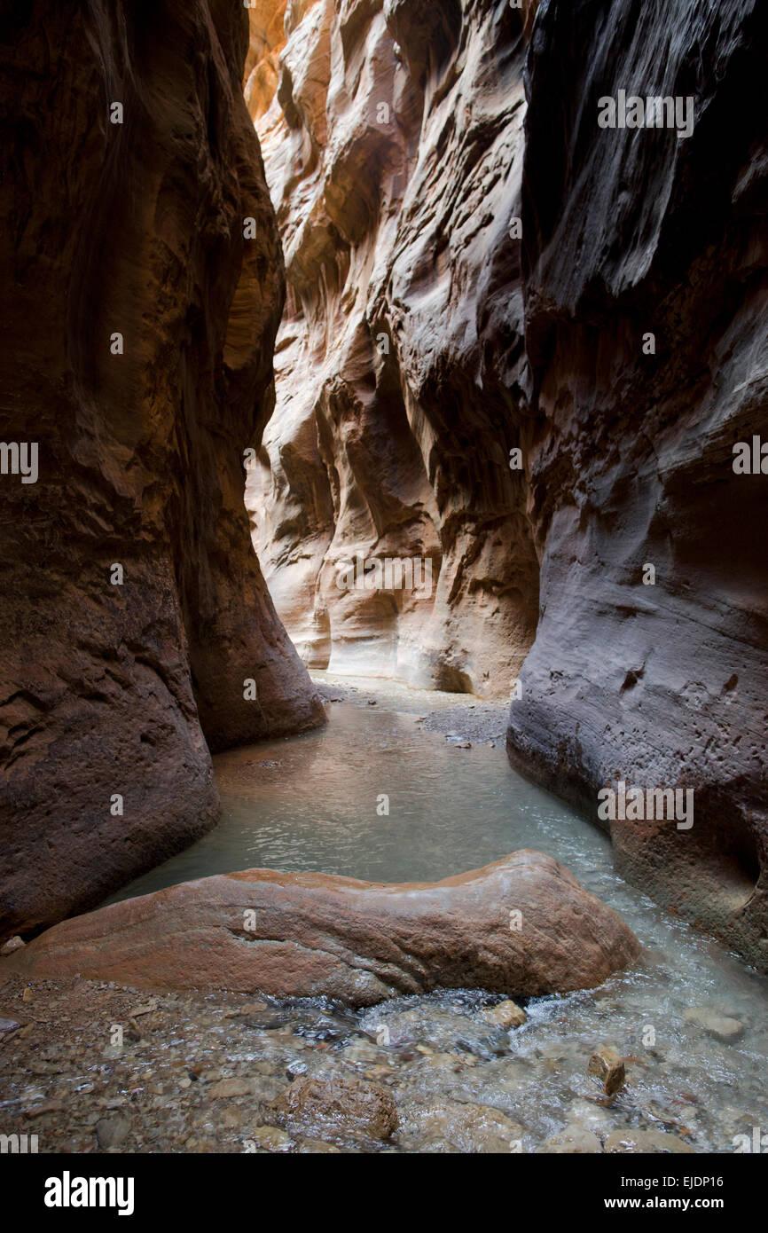 Los Narrows, en el Parque Nacional de Zion sigue siendo uno de los paseos más populares. Foto de stock