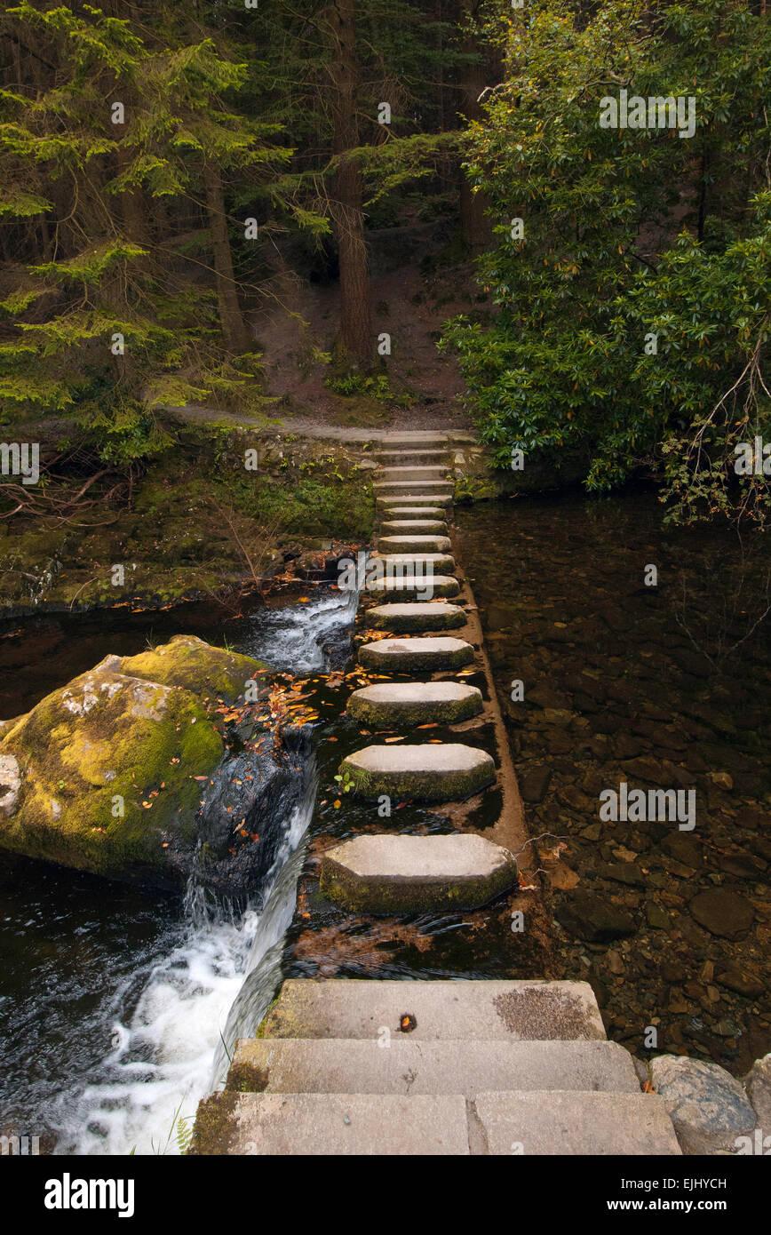 Uno de los 16 puentes que cruzan el río Shimna en Tollymore Park, Irlanda del Norte Foto de stock