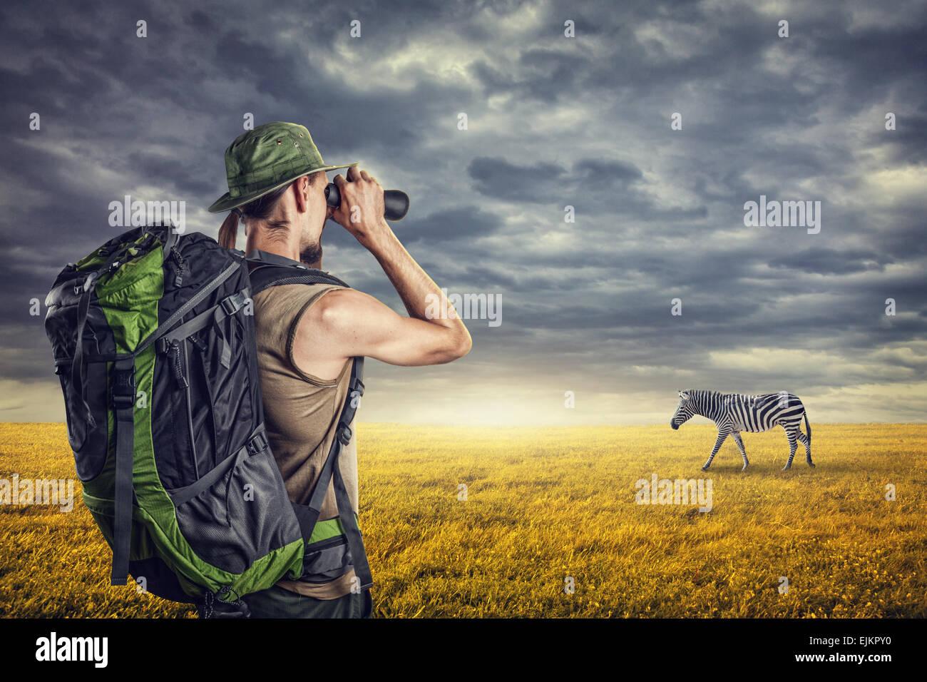 Hombre con prismáticos viendo la cebra en la sabana al atardecer cielo con nubes dramáticas Imagen De Stock