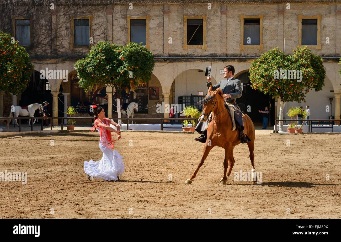 El espectáculo ecuestre en las caballerizas reales de Córdoba Foto de stock