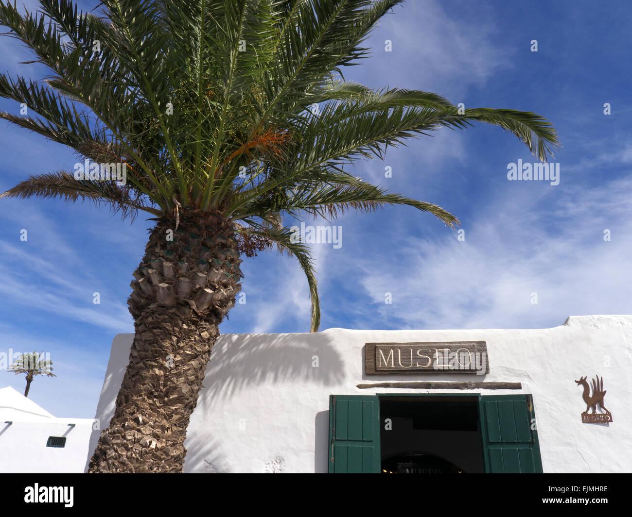 Cata de vinos de la bodega y el museo enmarcadas por palmeras en ...