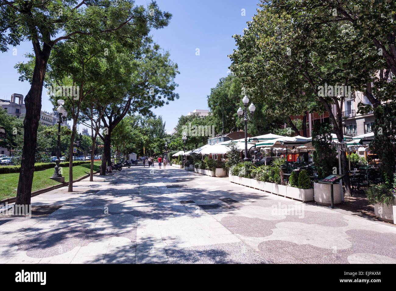 Terrazas En El Paseo De Recoletos Madrid Foto Imagen De