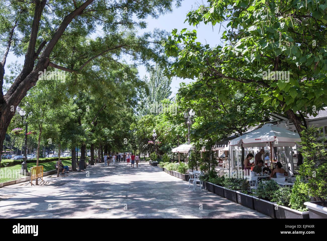 Terraza En El Paseo De Recoletos Madrid Foto Imagen De