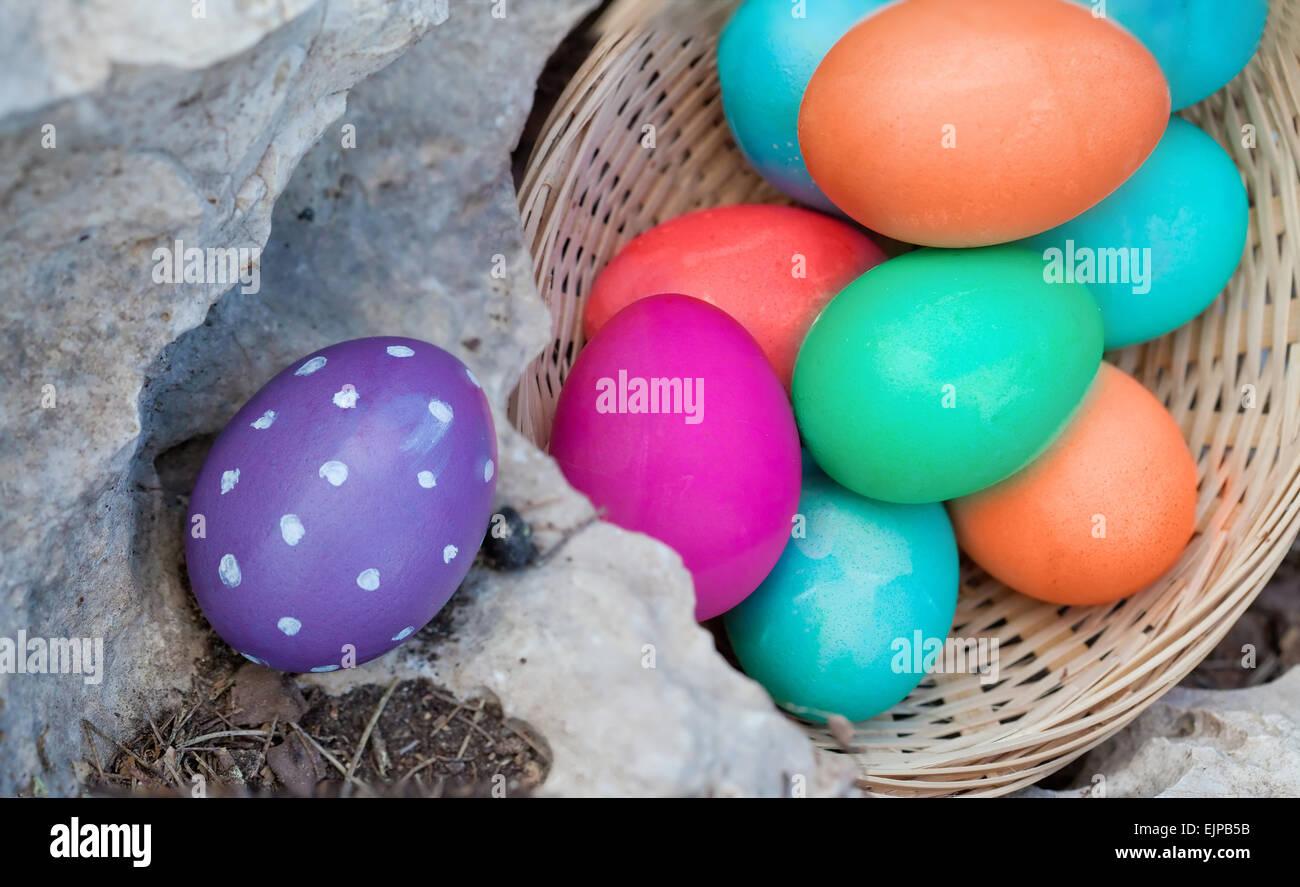 Colocar los huevos pintados en diversos lugares para huevo hunt Imagen De Stock