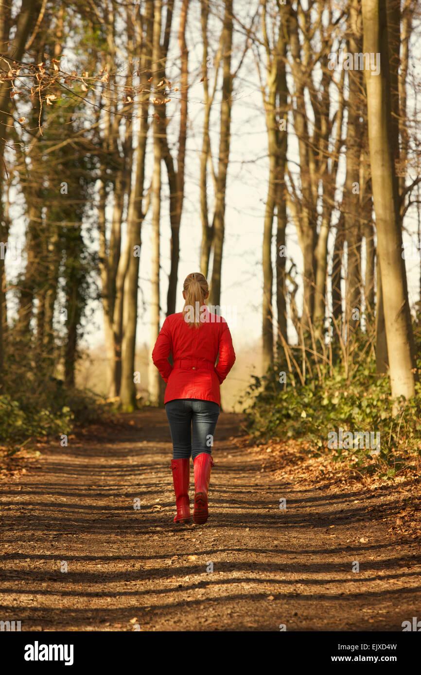 Vista posterior de la mujer caminando en la ruta del bosque Foto de stock