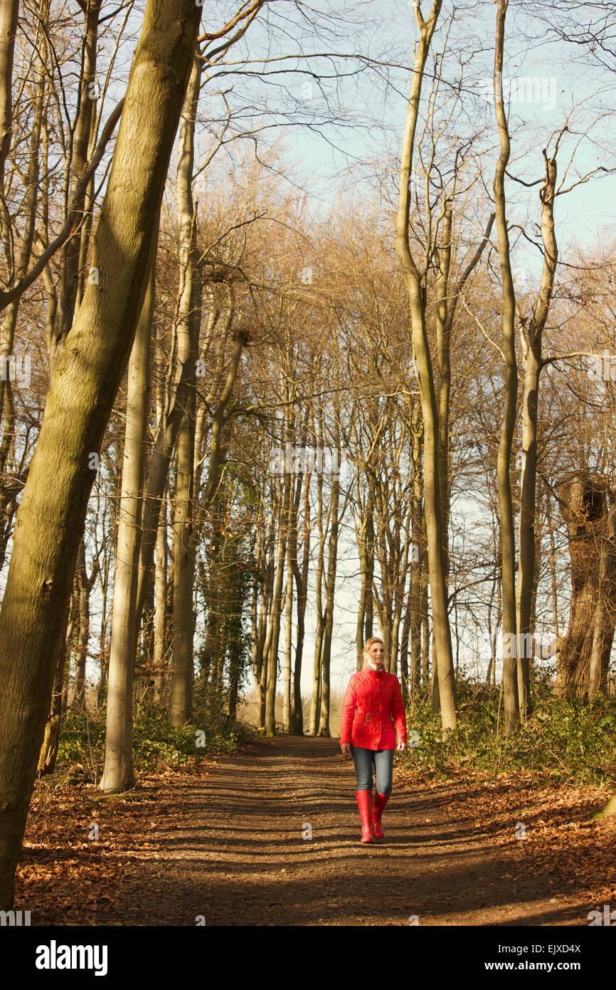 Mujer caminando en la ruta del bosque Foto de stock