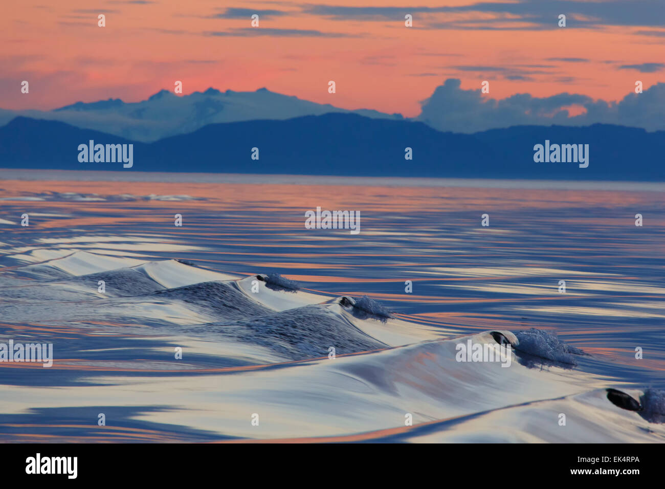 Sunset, Cabo Fanshaw, Tongass National Forest, Alaska. Imagen De Stock