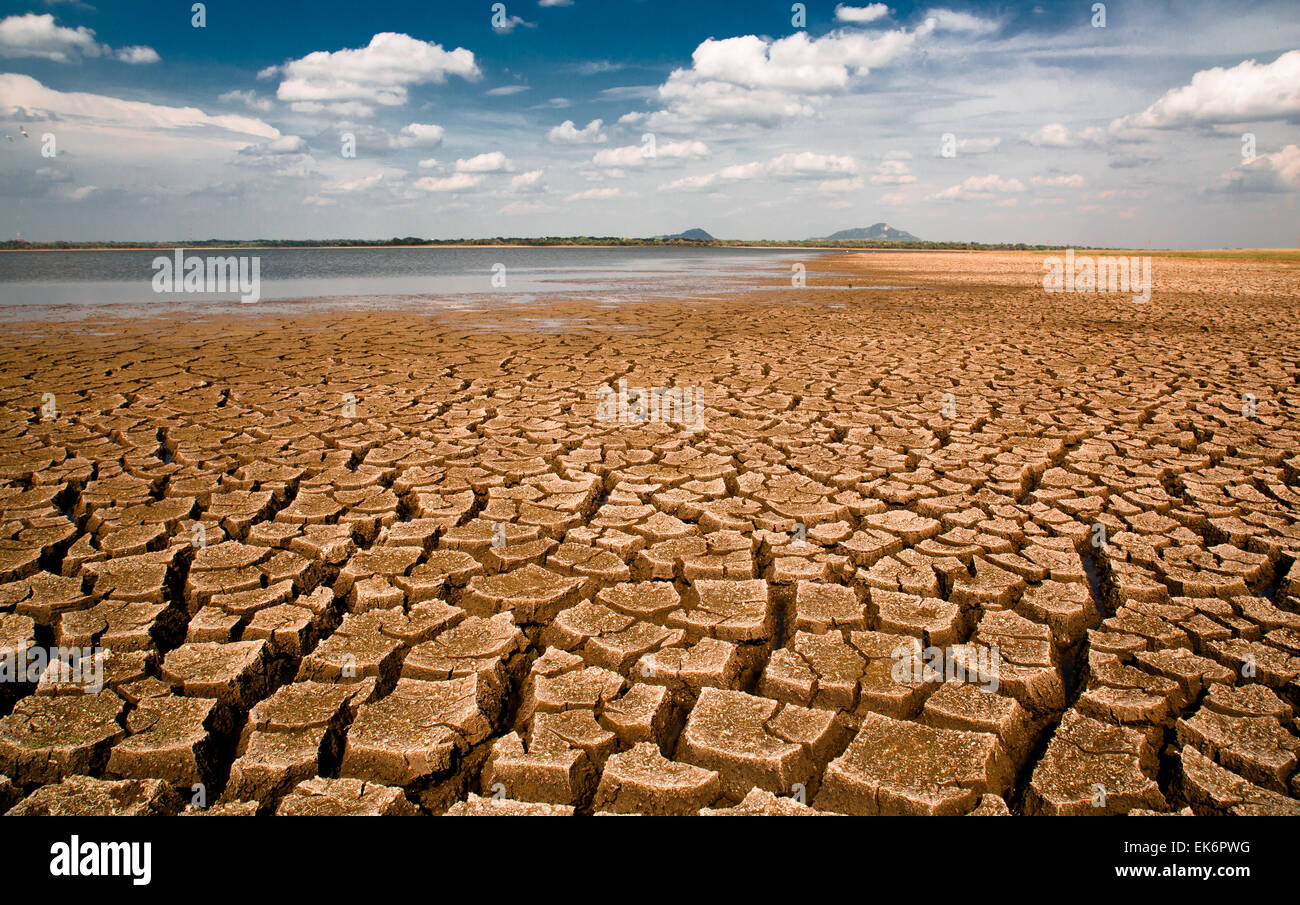 La temporada seca en Sri Lanka: las aguas del Nuwara Wewa han retrocedido, y la tierra seca en el implacable sol. Foto de stock