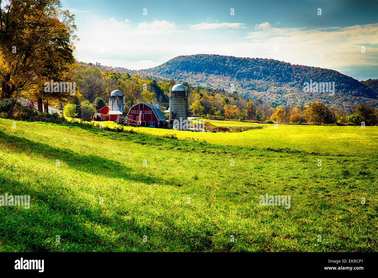 Ángulo de visión baja de un clásico American Farm durante el otoño, Arlington, Vermont Imagen De Stock