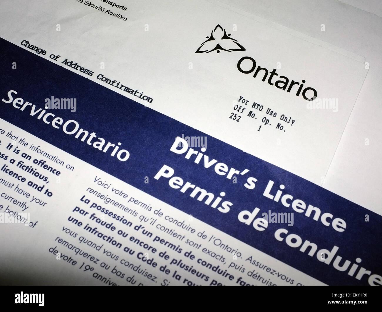 Licencia de conductor de Ontario el papeleo. Imagen De Stock